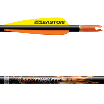 Easton XX75 Tribute | 1916