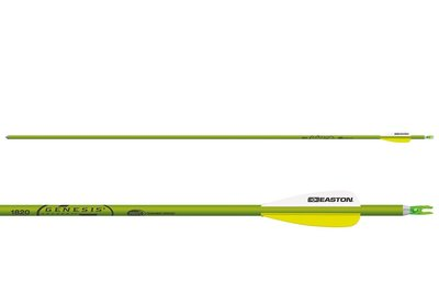 Easton XX75 Genesis